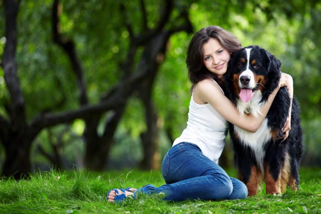 Emotional Support Animal Laws